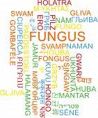 foto of fungus  - Background concept wordcloud multilanguage international many language illustration of fungus - JPG