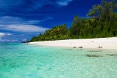 picture of tropical island  - The best swimming beach with palm trees on tropical island Rarotonga - JPG