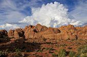 Jumbled Rocks