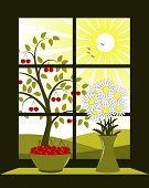 Cherry Tree Outside Window