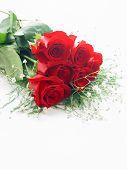 Close-up van een Half dozijn rozen