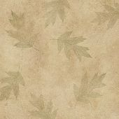 Leaves On Canvas
