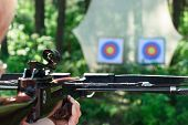 Man aiming crossbow at targets in summer forest
