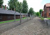 Fence and buildings in Auschwitz