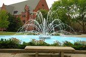 Sprinkler On Campus