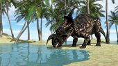 stock photo of quadruped  - einiosaurus drinking water - JPG