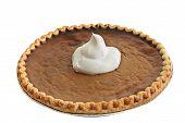 Pumpkin Pie - Whip Cream