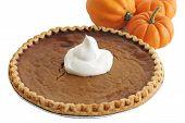 Pumpkin Pie & Pumpkins
