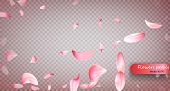 Pink Sakura Falling Petals Vector Background. Wedding, Valentine Or Women Day Pink Floral Blossoms F poster