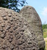 Trovanti - Growing stones