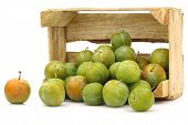 "fresh ""Reine Claude"" plums in a wooden crate"