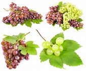 grapes with leaves, isolated