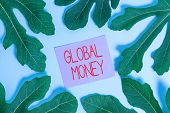Handwriting Text Global Money. Concept Meaning International Finance World Currency Transacted Globa poster