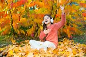 Autumn Playlist Concept. Enjoy Music Outdoors Fall Warm Day. It Is Time To Get In The Mood With Some poster