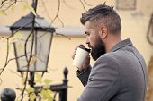 Businessman Bearded Guy Drink Coffee Outdoors. Hipster Hold Paper Coffee Cup And Enjoy Park Environm poster