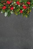Christmas background border with winter flora and fauna of holly, mistletoe, ivy, cedar leaves and s poster