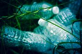 Ecology Concept. Plastic Bottles In The Green Grass. The Problem Of Ecology. poster