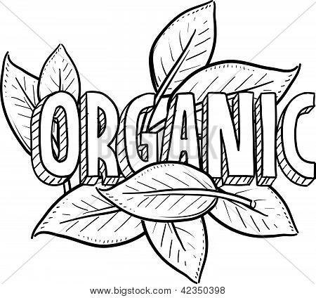 Постер, плакат: Эскиз органические продукты питания, холст на подрамнике