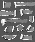 Colección de papel rasgado gris. Vector