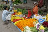 Flower Seller In Calcutta