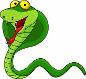 pic of anaconda  - Vector illustration of smiling cobra cartoon isolated on white - JPG