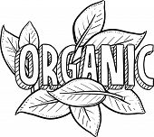 image of pesticide  - Doodle style organic food illustration in vector format - JPG