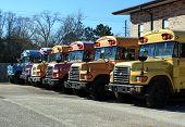 Rainbow School Busses