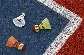 foto of shuttlecock  - Badminton colored shuttlecocks placed in the corner of a synthetic field - JPG