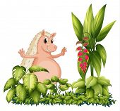 picture of bulging belly  - Illustration of a wild animal in the garden on a white background - JPG