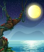 Illustration of the bright moon and the big tree