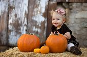 Happy Toddler with Pumpkin