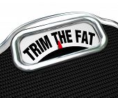 The words Trim the Fat on a scale, representing the need to diet and lose weight or to tighten your budget and cut costs during tough economic or financial times