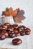Horse Chestnuts Or Conkers On The Table, Basket With Autumn Leaves.