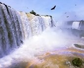 high-water waterfall in the world - Iguazu. White whipped foam of water and a thin mist over the water.  Between a waterfall and a rainbow fly huge Andean condors. The picture is taken by lens Fisheye