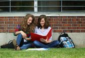Two smiling girls sit on a grass with their bag, books and study their lessons