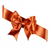 reddish brown bow made from silk ribbon isolated