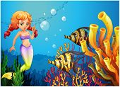 Illustration of a mermaid watching the two fishes