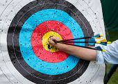 Target For Archery With Arrows