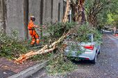 Emergency services clear up after tornado