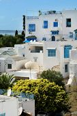 Sidi Bou Said Houses