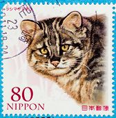 JAPAN - CIRCA 1990th: A stamp printed in japan shows wild cat, circa 1990th
