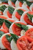 Scrumptious salad of tomato and mozzarella