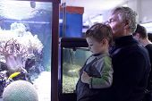 Grandfather With Grandson At Oceanarium
