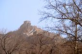 The Great Wall Of China With Barren Trees In The Foreground