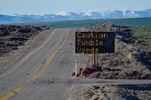Caution Tumbleweeds Road Sign