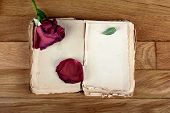 Open Old Book With Blank Pages For Text And Dry Rose On Vintage Wooden Table