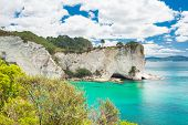 stock photo of stingray  - View at Stingray Bay at Cathedral Cove Marine Reserve - JPG
