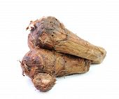 picture of taro corms  - Fresh  taro roots  isolated  on white background - JPG