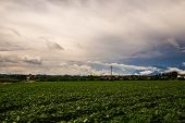 Storm In The Fields Of Italy