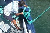 Fisherman winding rope on boat
